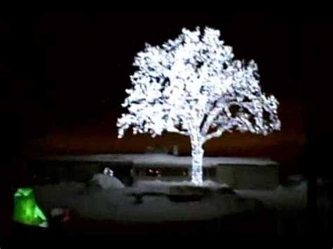 tree of light song led oak tree lights up the cities sky