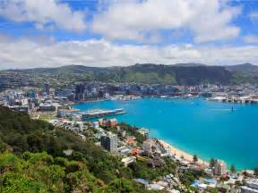 looksee wellington a tech company is flying 97 to new zealand to