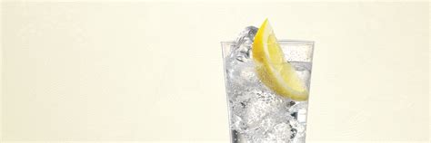vodka tonic lemon 100 vodka tonic lemon set of 2 fishbowl copa gin