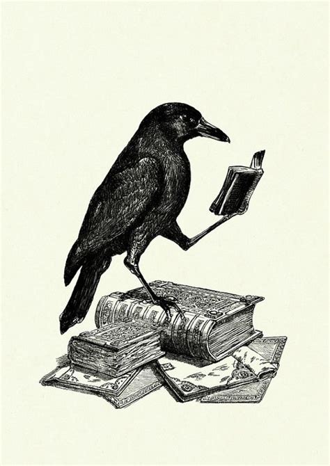 the of all crows the book in the map of unknown things 1map of unknown things books reading a book by