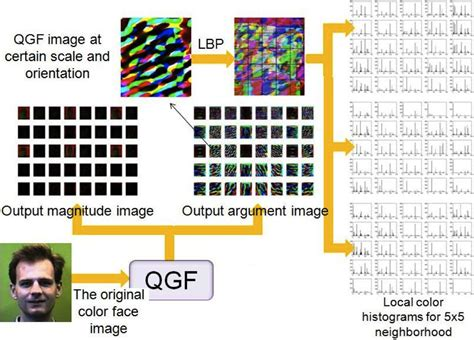 color pattern recognition by quaternion correlation fun projects