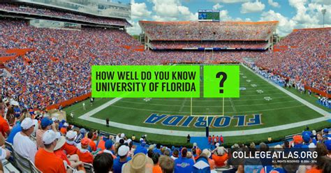 Uf Mba Scholarships by Think You The Of Florida