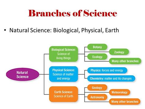 think do learn natural sciences 3 digital class book module 3 blinkshop 11 best science images on science worksheets science fair and earth science