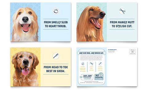 grooming services pet grooming service postcard template design