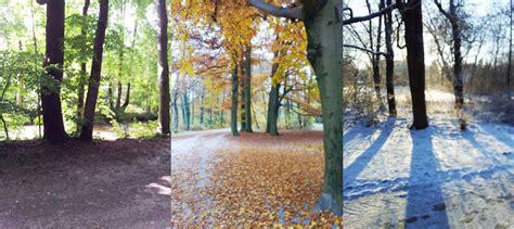 Englischer Garten München Mit Dem Fahrrad by Mein T 228 Glicher Weg Durch Den Englischen Garten Bei Wind