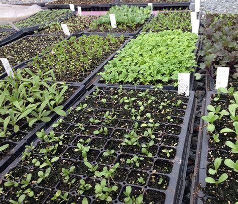 Garden Soil On Sale by Organic Soil Sale Schuylkill Center For Environmental