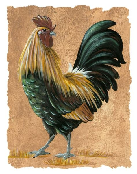 rooster pictures for kitchen rustic rooster print rooster kitchen rooster rooster pictures italian kitchen
