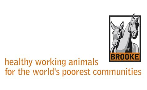 charity choice charity directory list of charities the brooke hospital for animals working animals