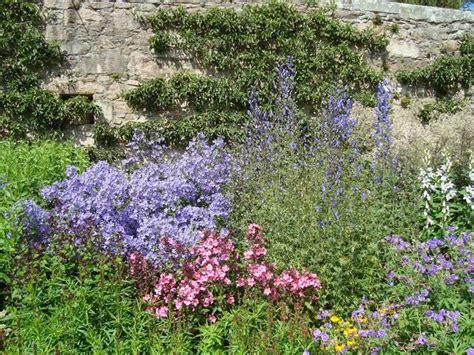 bordure fiorite perenni le piante erbacee perenni speciali