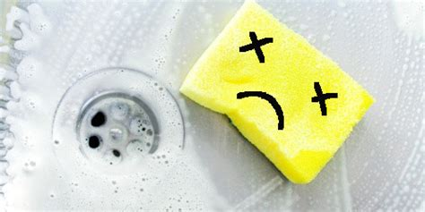 kitchen sponge your kitchen sponge is as revolting as it smells the