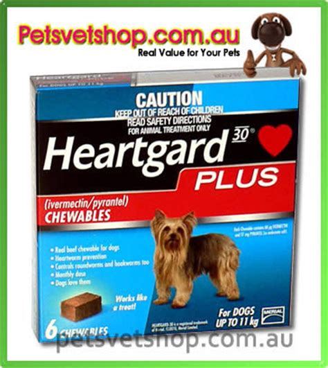 heartgard plus for dogs up to 25 lbs heartgard 30 plus chews small dogs up to 11 kg blue up to 25 lb petsvetshop au