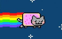 Cat Meme Gif - nyan cat gif find share on giphy