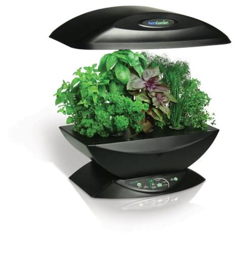 aerogarden indoor garden miracle gro aerogarden 7 pod indoor garden with gourmet