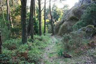 monte aloia nature park espanha cosas de verano mayo 2009