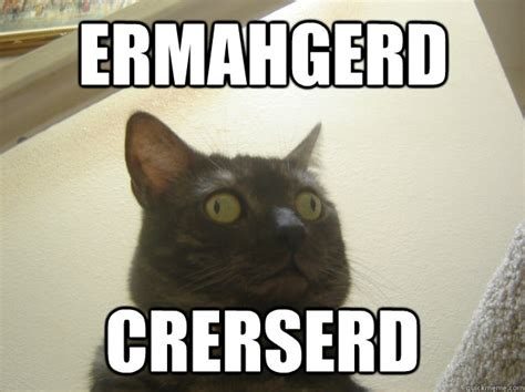 Ermahgerd Meme - ermahgerd crerserd derp cat quickmeme