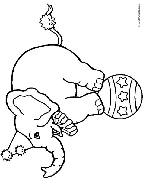 circus elephants coloring pages circus elephant coloring pages