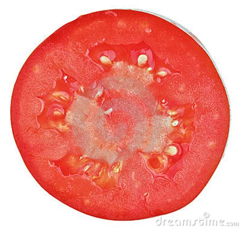 tomato cross section translucent cross section of tomato stock image image