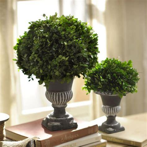 piante finte da interno le piante finte in casa se casa it
