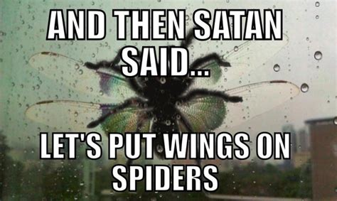 And Then Satan Said Let - and then satan said let s out wings on spiders know