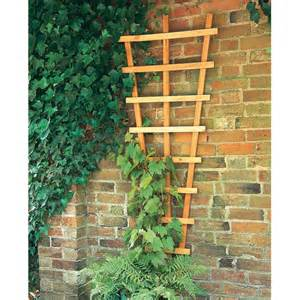 forest fan trellis buy fencing direct uk