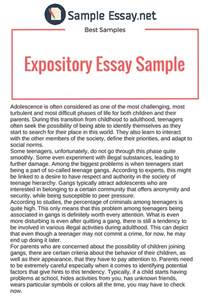Sample Expository Essay Sample Expository Essay Rstudio Co