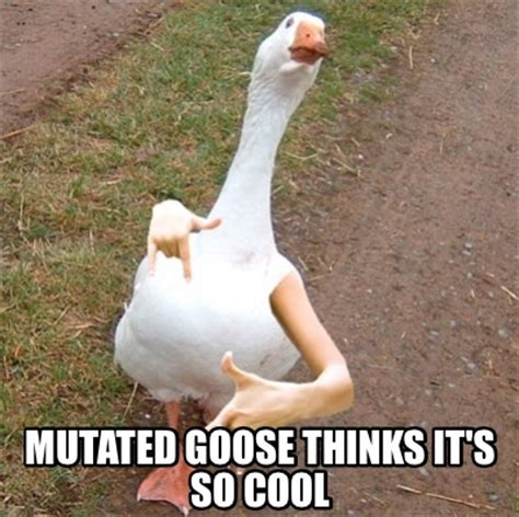 It Memes - meme creator mutated goose thinks it s so cool