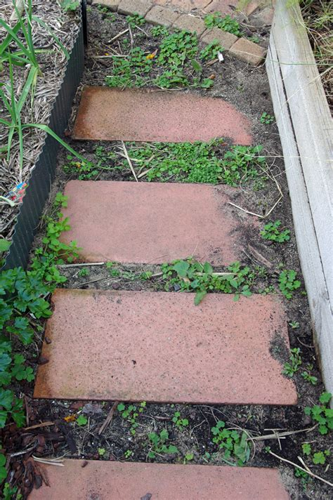 How To Remove Weeds Between Patio Stones garden maintenance jan s garden