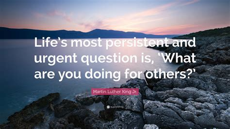 martin luther king jr quote lifes  persistent  urgent question
