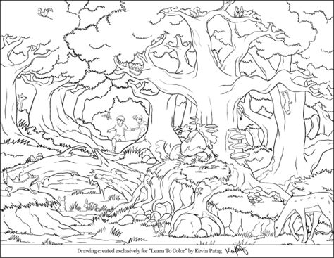 rainforest animals coloring pages entering the eerie