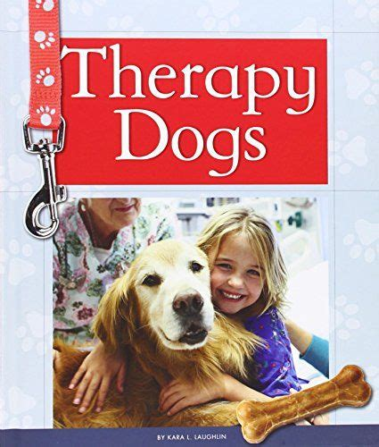how to get your trained as a therapy 17 best ideas about therapy on therapy dogs service dogs and