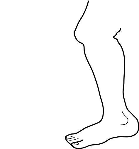 forever grayscale coloring book coloring book books clipart leg b w