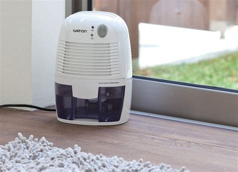 best dehumidifier for basement mold allergies 7 ways to allergy proof your home bob