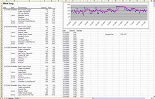 Nutrition Spreadsheet Template by The Diet Spreadsheet By Zawodny