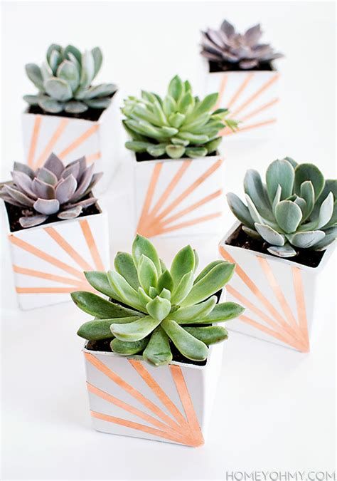 diy succulent projects diy copper and white succulent planters homey oh my