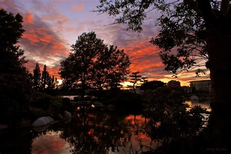 Sunset Garden by Panoramio Photo Of Sunset At Laurel Point Inn Japanese