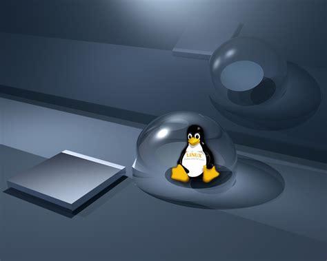X Linux linux wallpaper daertube