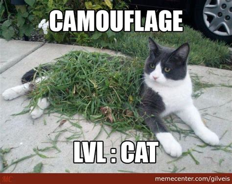 Sneaky Cat Meme - cat going sneaky to kill us all by gilveis meme center
