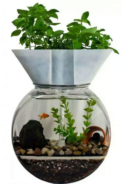 awesome small indoor aquarium ideas    house