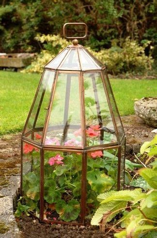 181 Best Images About Cloches Domes And Terrariums On Terrarium Light Fixture