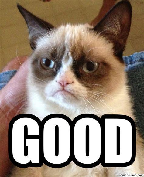 Good Grumpy Cat Meme - grumpy cat good