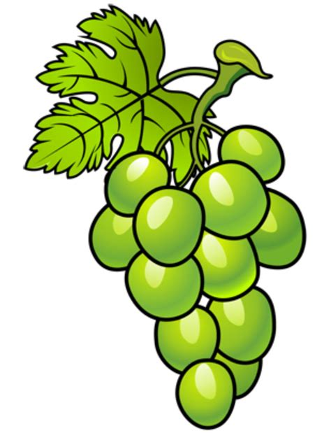 imagenes animadas de uvas uvas en dibujos animados