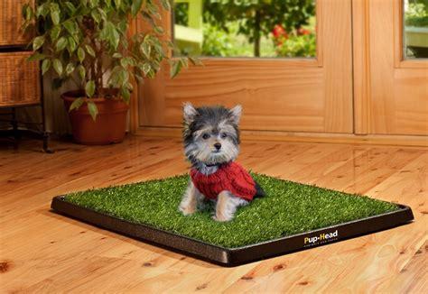 grass puppy pads pet potty mat pet potty grass pad park patch mat indoor 25 growing