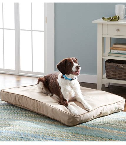 llbean dog bed therapeutic dog bed rectangular l l bean