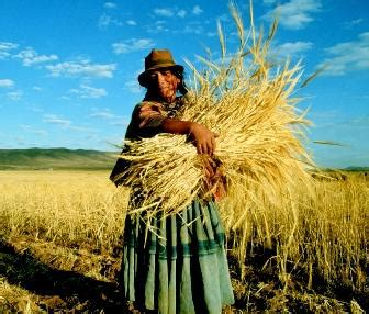 expedition earth subsistence farming