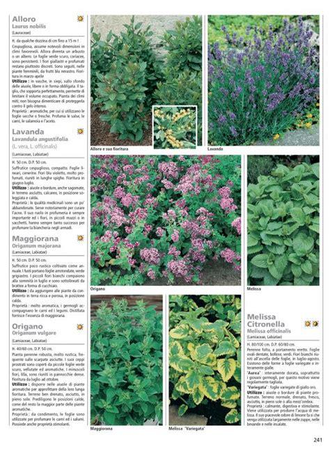 piante interne piante perenni 232 la guida completa a tutte le variet 224