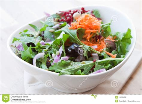 Garden Vegetable Salad Garden Vegetable Salad Royalty Free Stock Photos Image