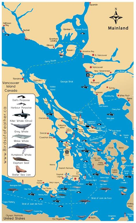 zodiac boats vancouver island 25 best images about roads on pinterest open roads