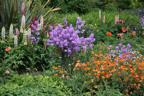 cottage garden floral panoramio photo of bodnant cottage garden flower bed