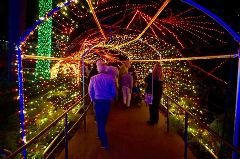 atlanta botanical garden lights 5 things atlanta sundays