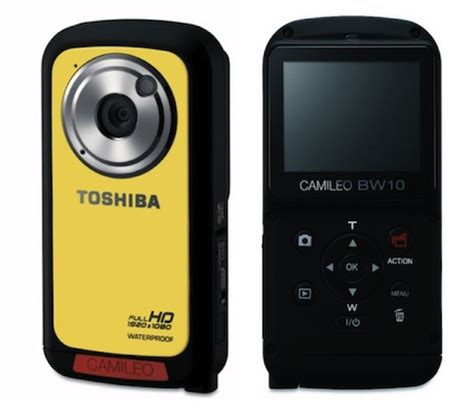 teacup pomeranian puppies for sale in chennai toshiba camileo bw10 hd digital camcorder reviews